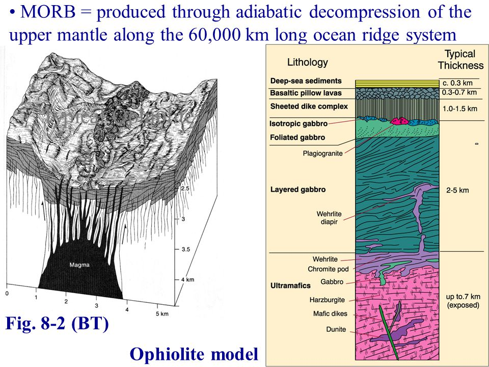 MORB = produced through adiabatic decompression of the upper mantle along the 60,000 km long ocean ridge system Ophiolite model Fig.