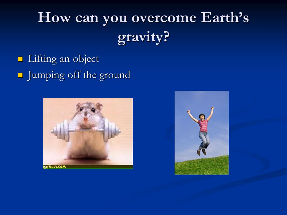 Law of Universal Gravitation Isaac Newton realized that a gravitational force causes objects to fall toward Earth and keeps the planets in orbit.