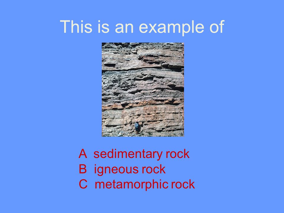 This is an example of A sedimentary rock B igneous rock C metamorphic rock