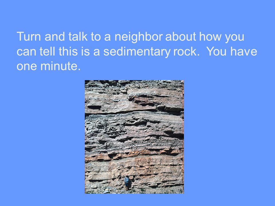 Turn and talk to a neighbor about how you can tell this is a sedimentary rock. You have one minute.
