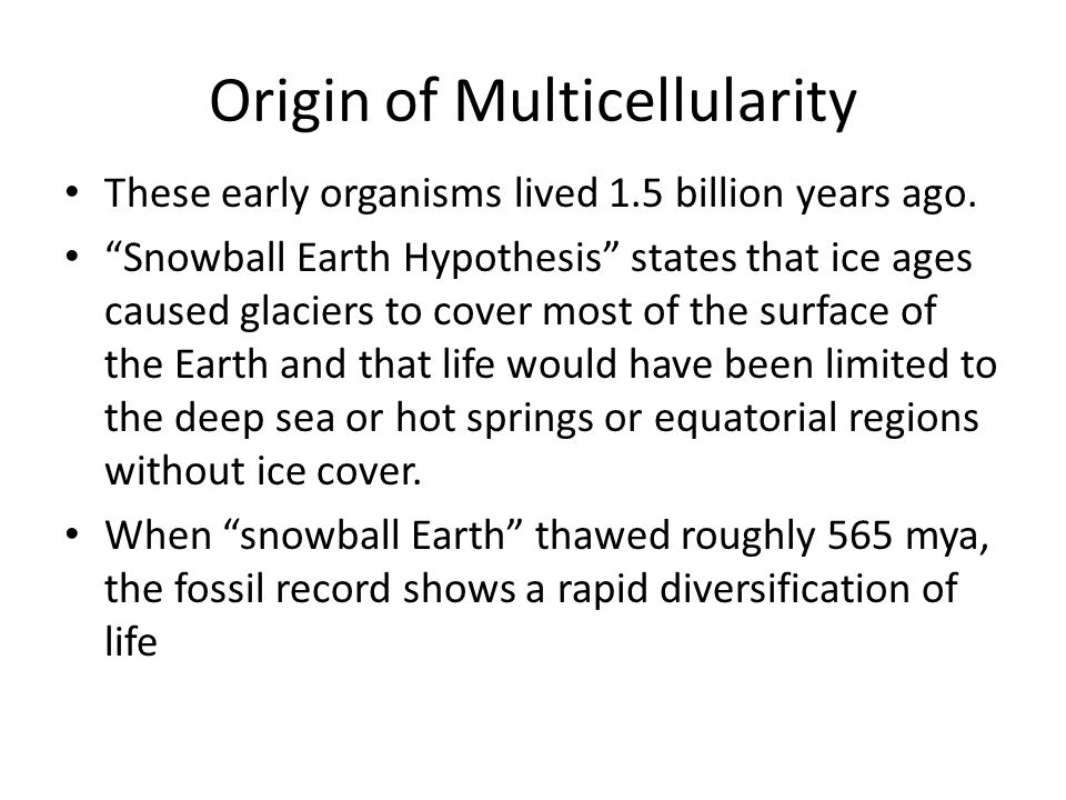 """Origin of Multicellularity These early organisms lived 1.5 billion years ago. """"Snowball Earth Hypothesis"""" states that ice ages caused glaciers to cove"""