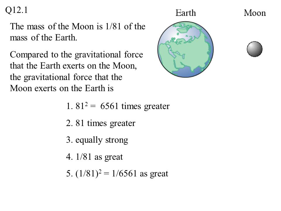 The mass of the Moon is 1/81 of the mass of the Earth. Compared to the gravitational force that the Earth exerts on the Moon, the gravitational force