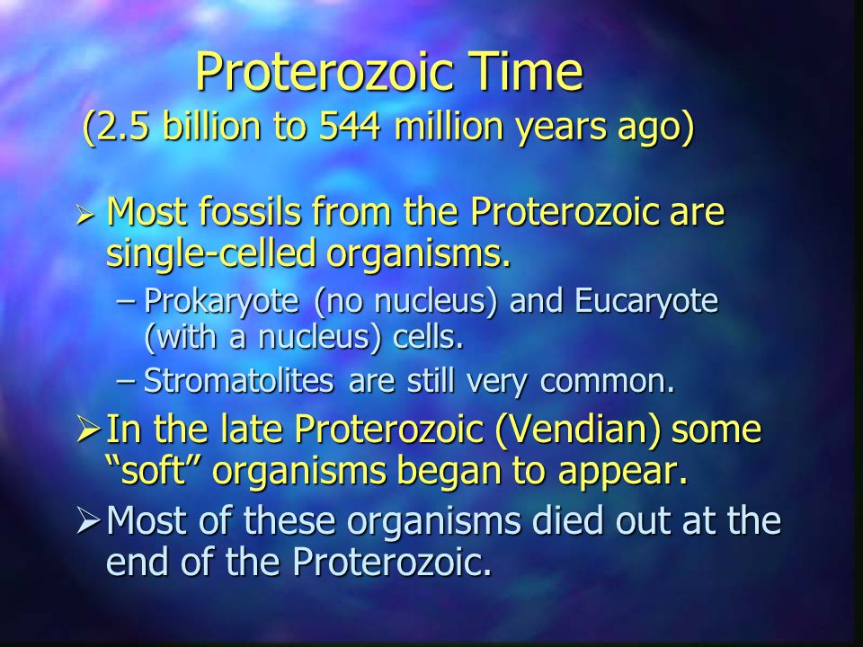 Proterozoic Time (2.5 billion to 544 million years ago)  Most fossils from the Proterozoic are single-celled organisms.