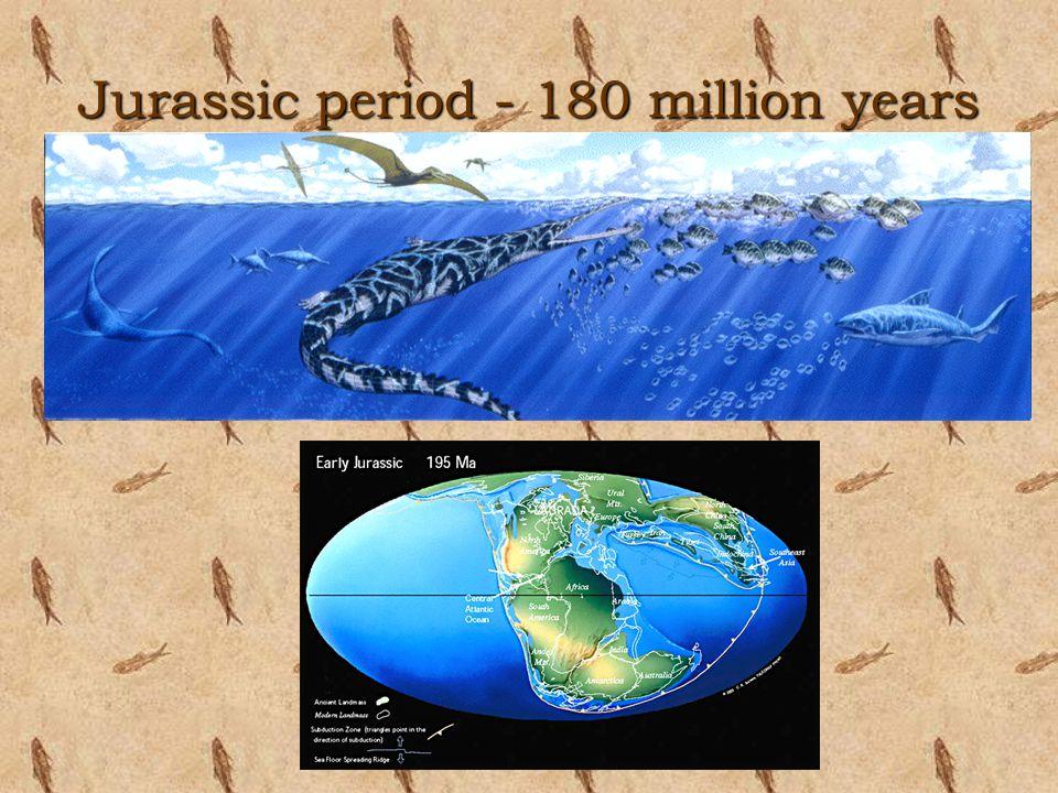 Jurassic period - 180 million years