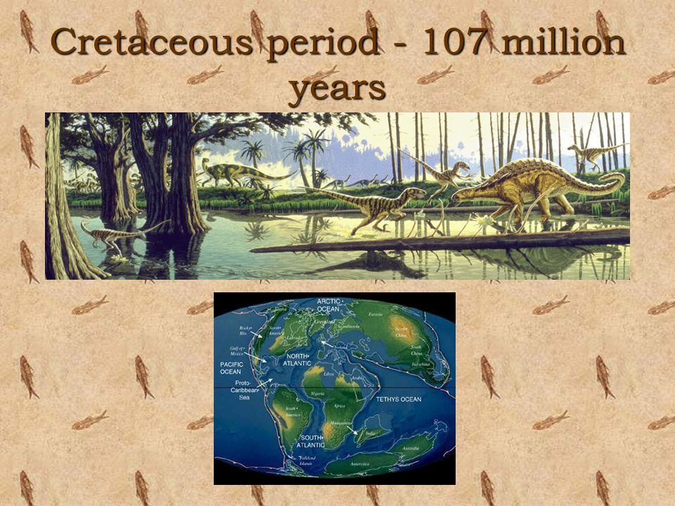 Cretaceous period - 107 million years