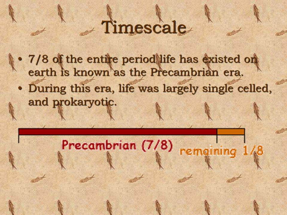 Timescale 7/8 of the entire period life has existed on earth is known as the Precambrian era.7/8 of the entire period life has existed on earth is kno