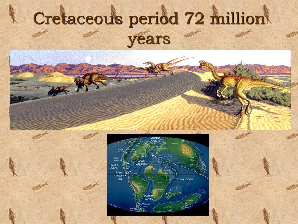 Cretaceous period 72 million years