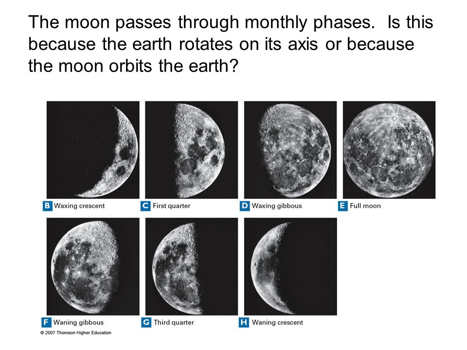 The moon passes through monthly phases. Is this because the earth rotates on its axis or because the moon orbits the earth?