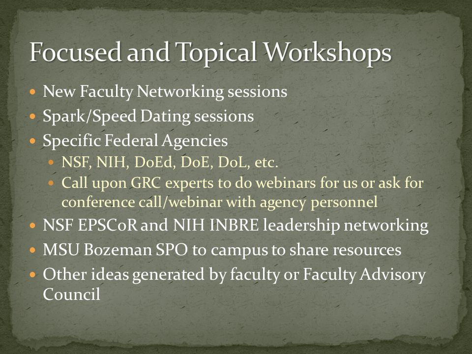 New Faculty Networking sessions Spark/Speed Dating sessions Specific Federal Agencies NSF, NIH, DoEd, DoE, DoL, etc.