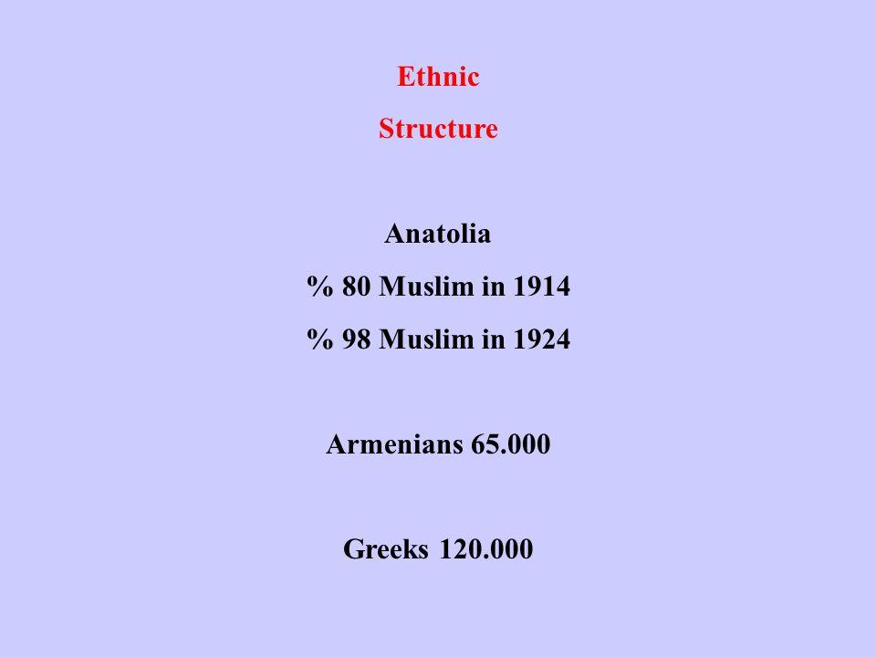 Ethnic Structure Anatolia % 80 Muslim in 1914 % 98 Muslim in 1924 Armenians 65.000 Greeks 120.000