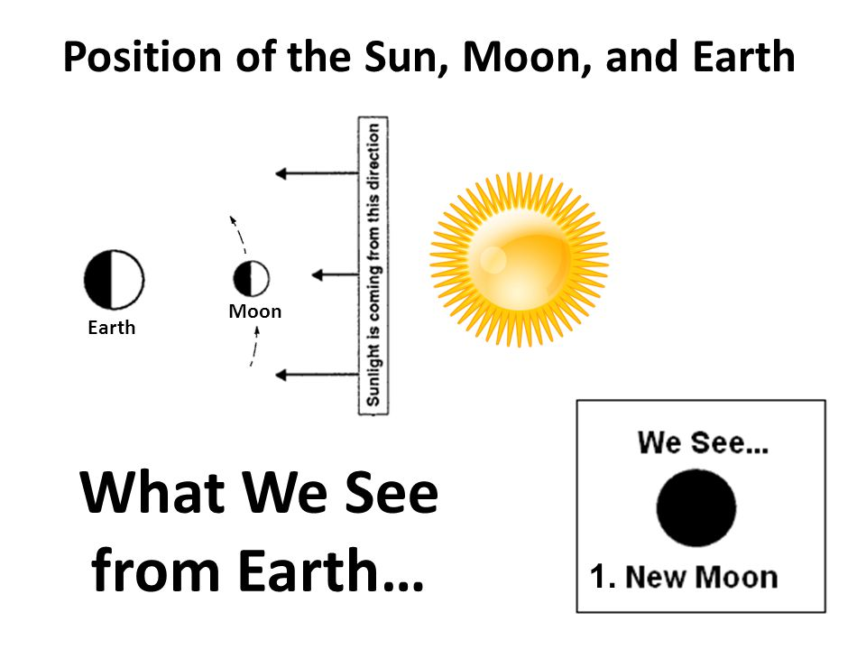 Position of the Sun, Moon, and Earth What We See from Earth… 1. Moon Earth