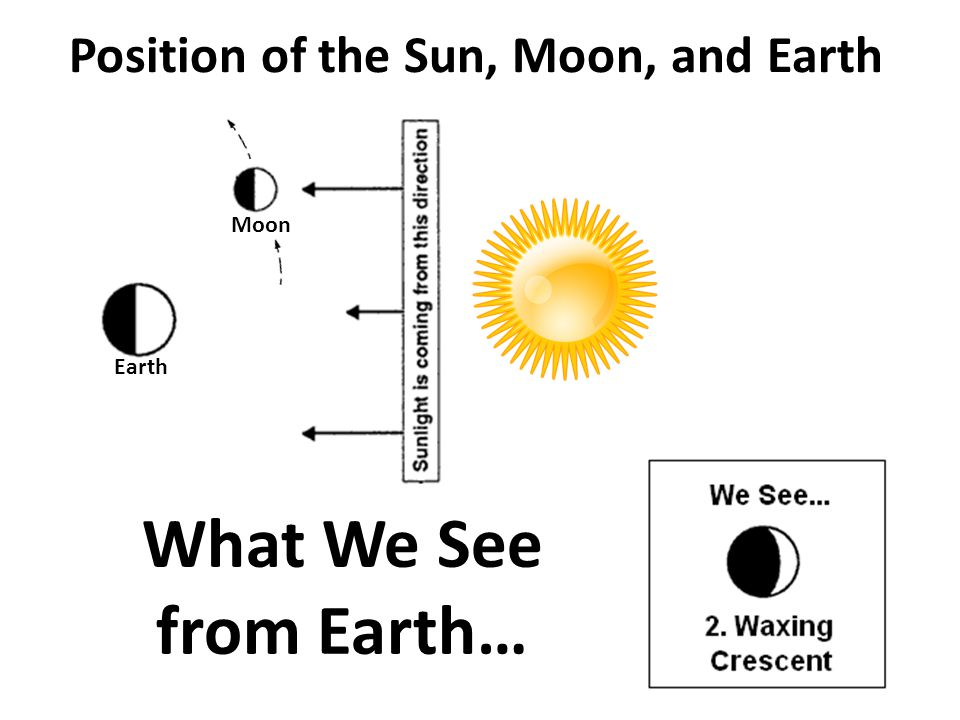 Position of the Sun, Moon, and Earth What We See from Earth… Moon Earth
