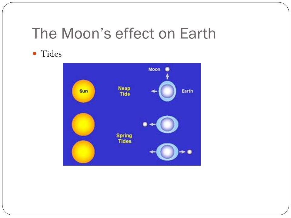 The Moon's effect on Earth Tides