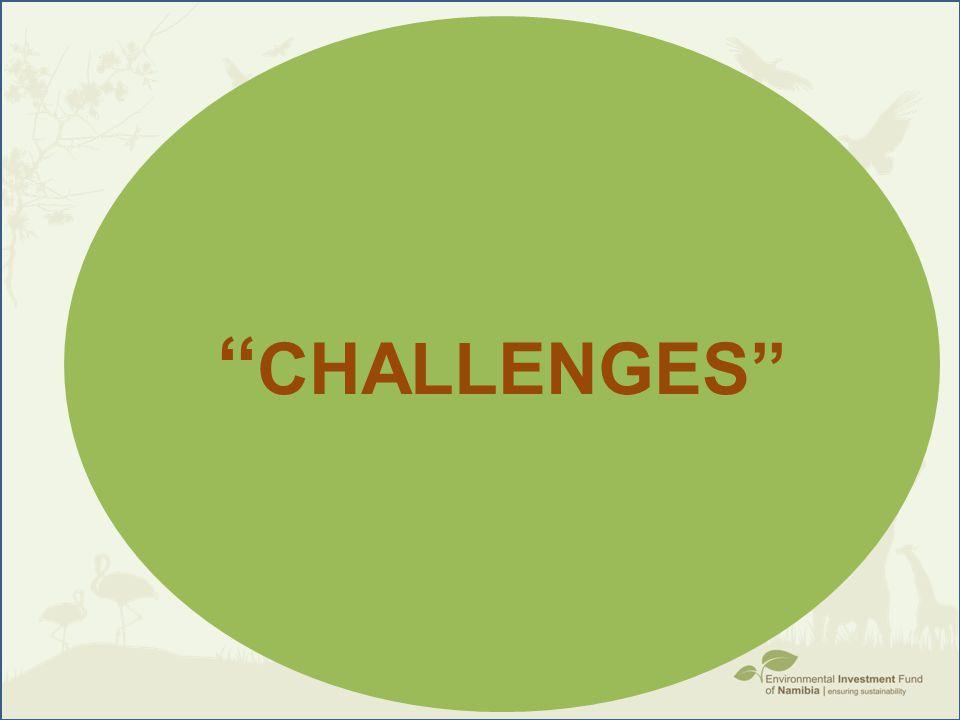 '' CHALLENGES''