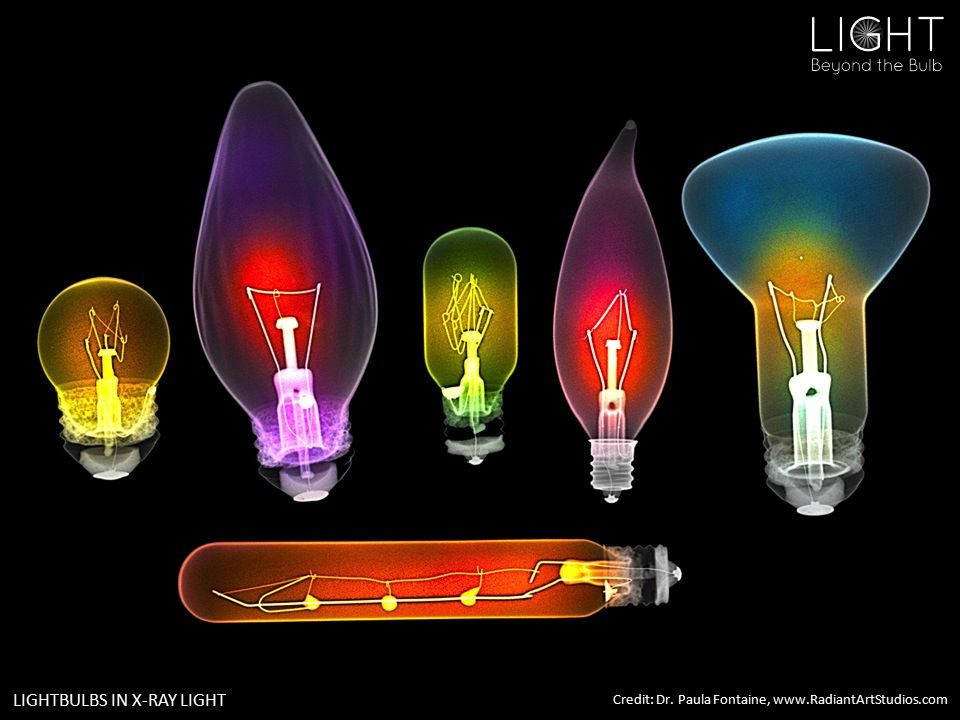 LIGHTBULBS IN X-RAY LIGHT Credit: Dr. Paula Fontaine, www.RadiantArtStudios.com