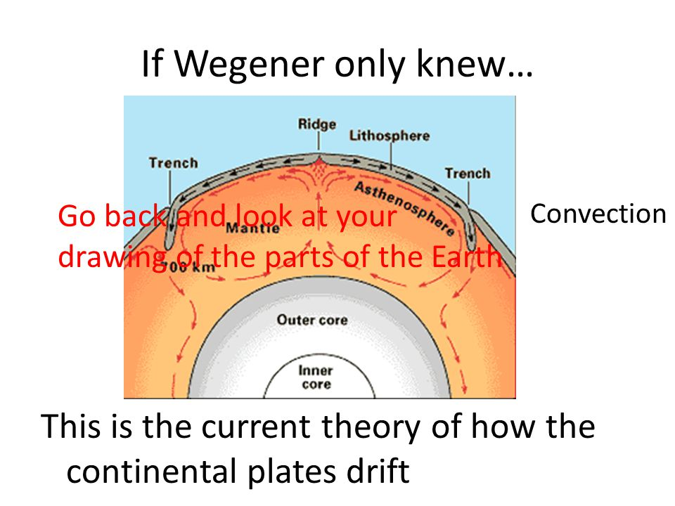 If Wegener only knew… This is the current theory of how the continental plates drift Convection Go back and look at your drawing of the parts of the E