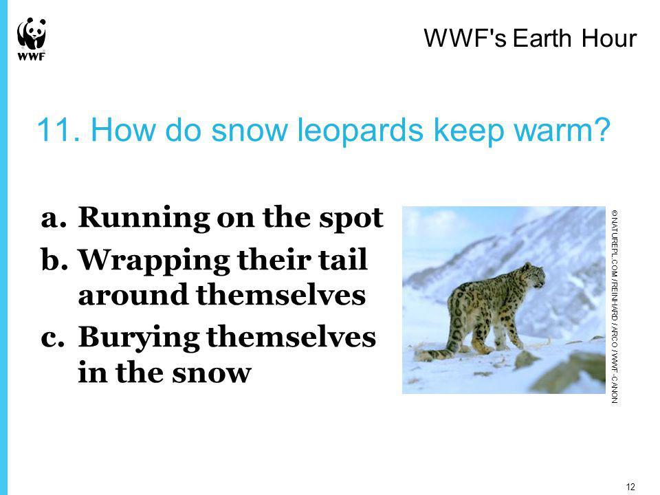 11. How do snow leopards keep warm.