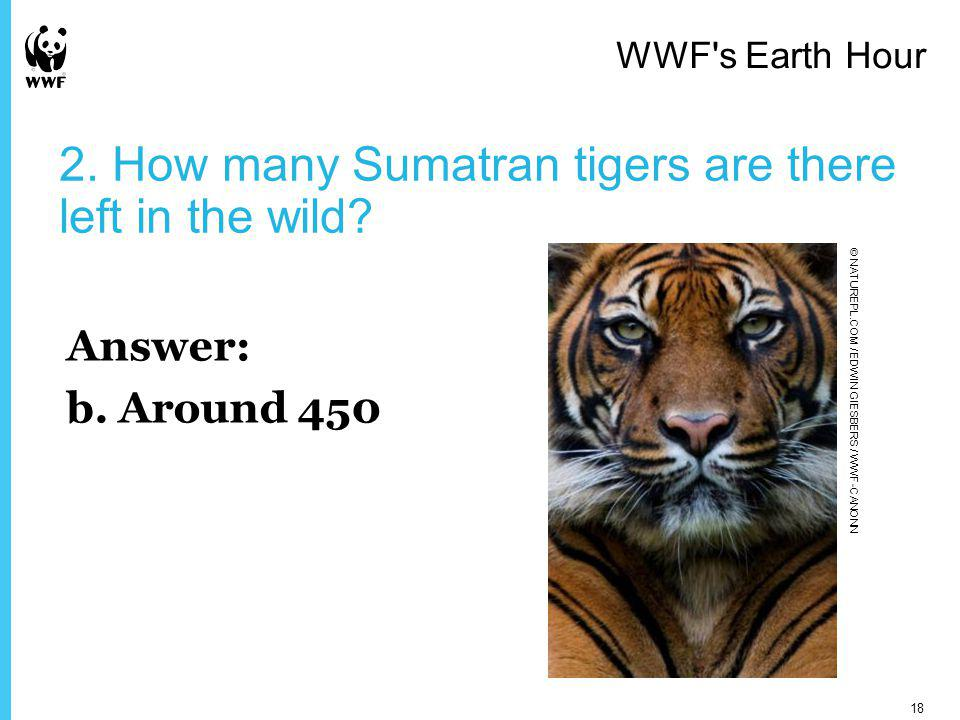 2. How many Sumatran tigers are there left in the wild.
