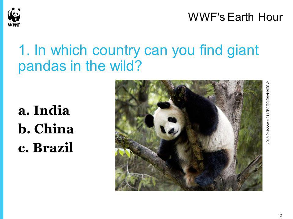 1. In which country can you find giant pandas in the wild.