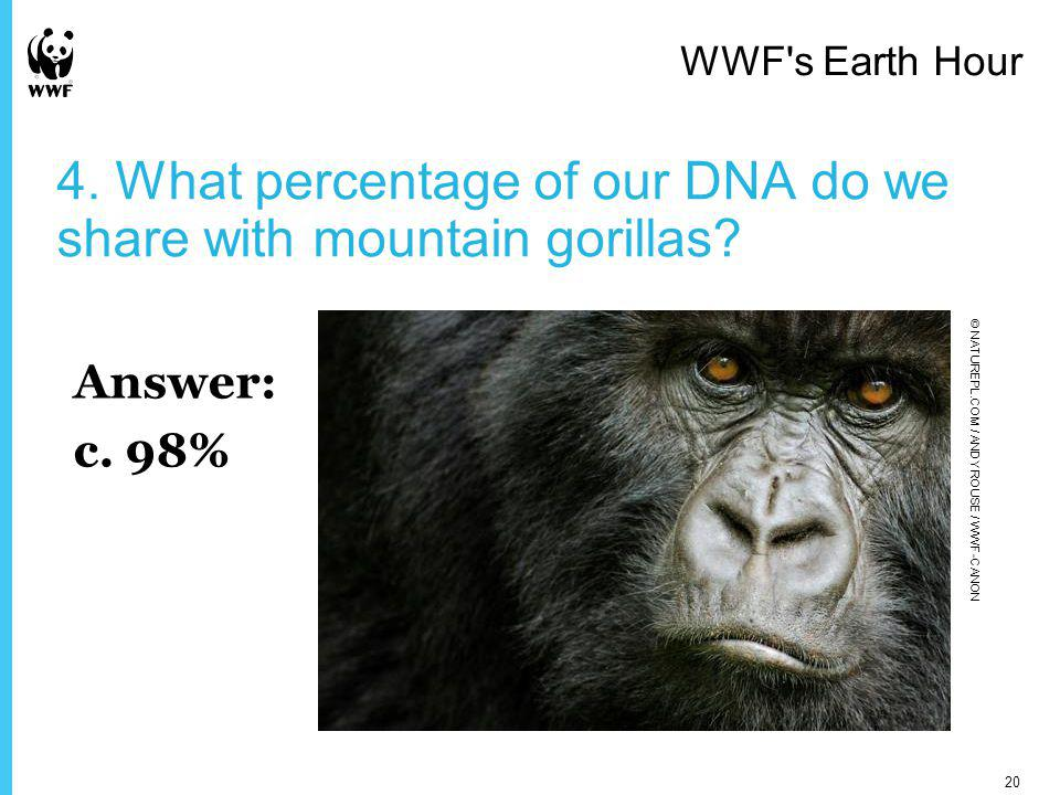 4. What percentage of our DNA do we share with mountain gorillas.