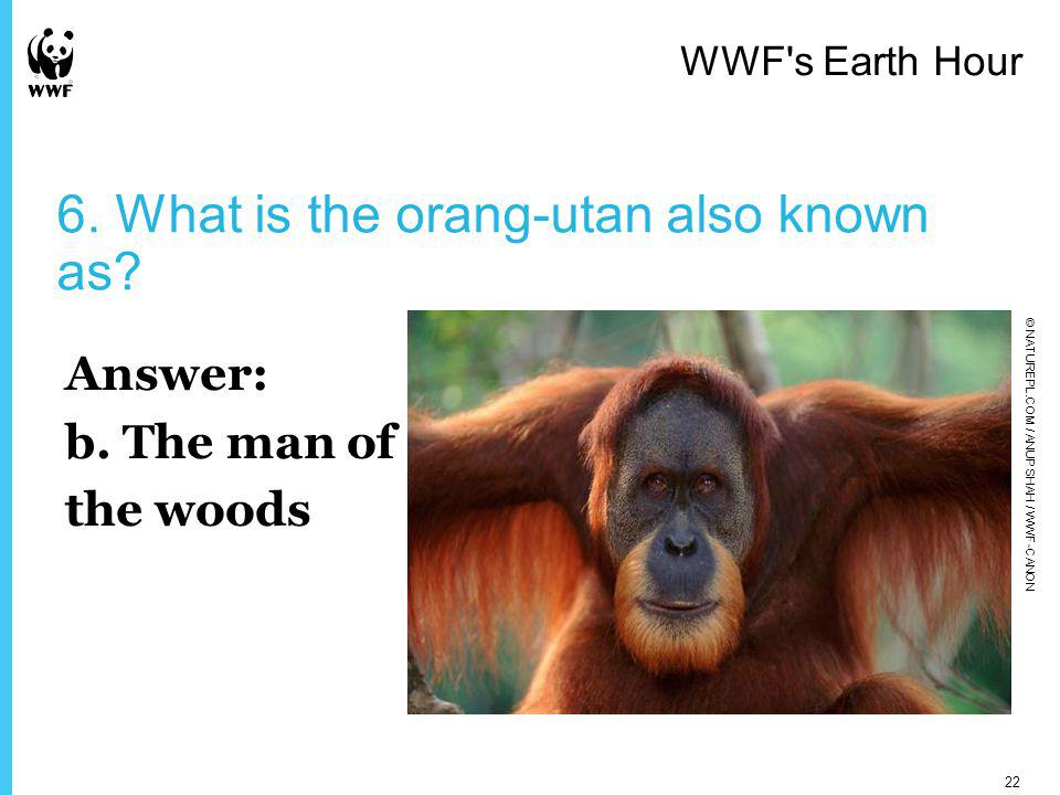 6. What is the orang-utan also known as. Answer: b.