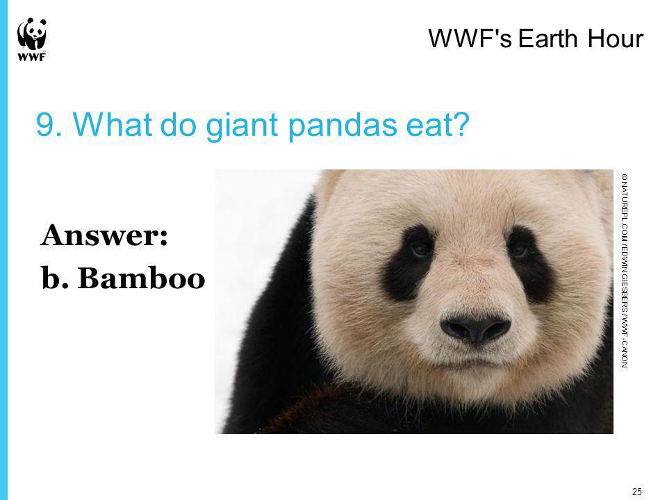 9. What do giant pandas eat. Answer: b.