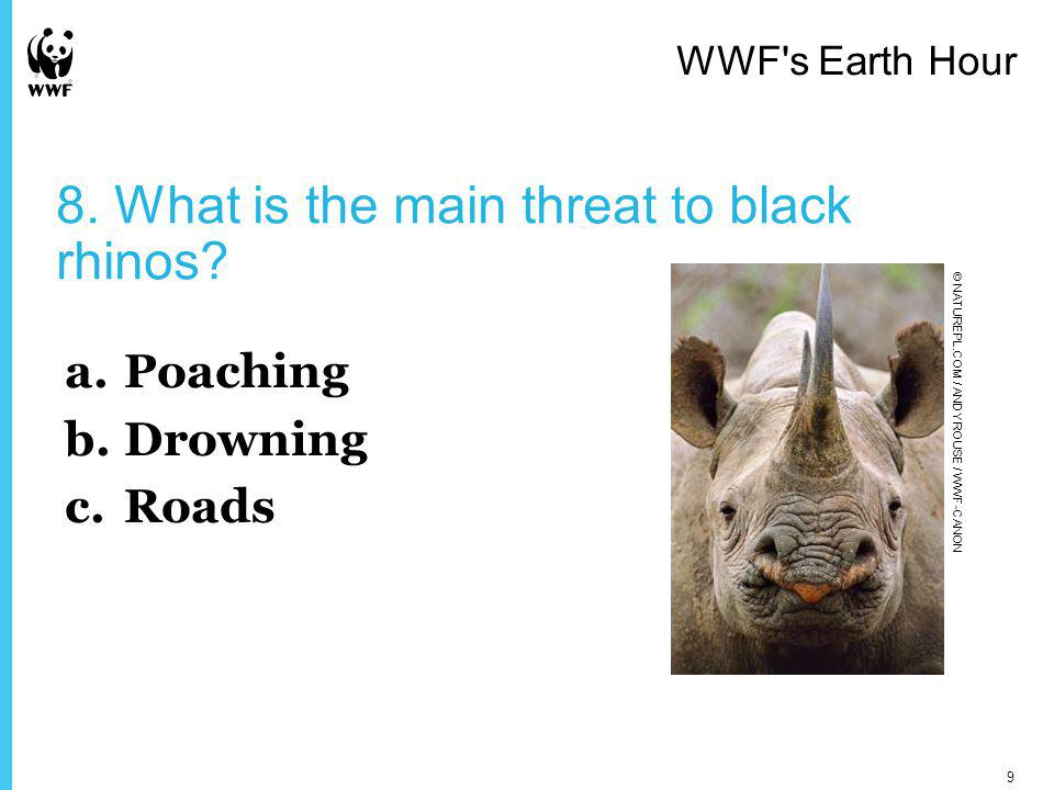 8. What is the main threat to black rhinos.