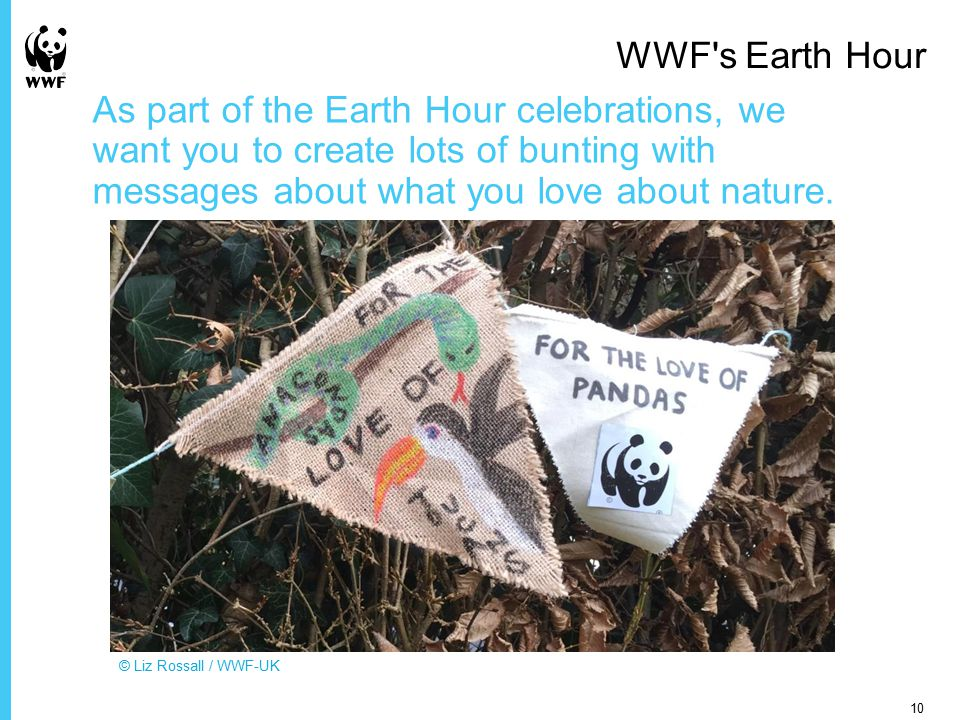 As part of the Earth Hour celebrations, we want you to create lots of bunting with messages about what you love about nature.