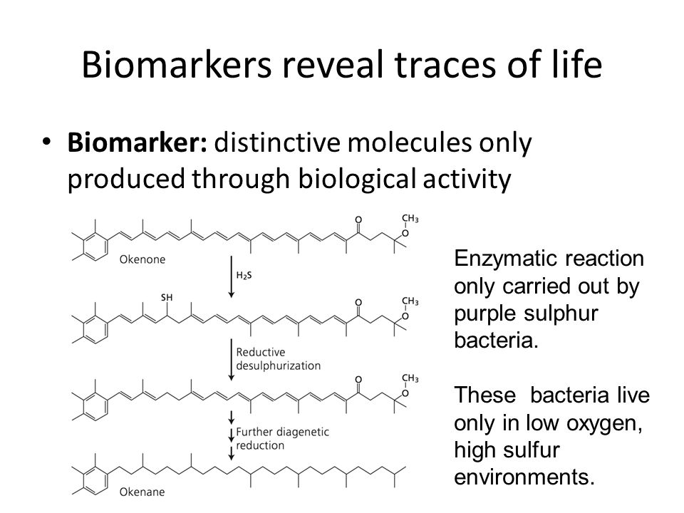 Biomarkers reveal traces of life Biomarker: distinctive molecules only produced through biological activity Enzymatic reaction only carried out by purple sulphur bacteria.