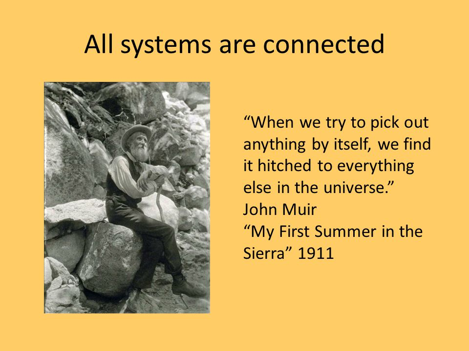 """All systems are connected """"When we try to pick out anything by itself, we find it hitched to everything else in the universe."""" John Muir """"My First Sum"""