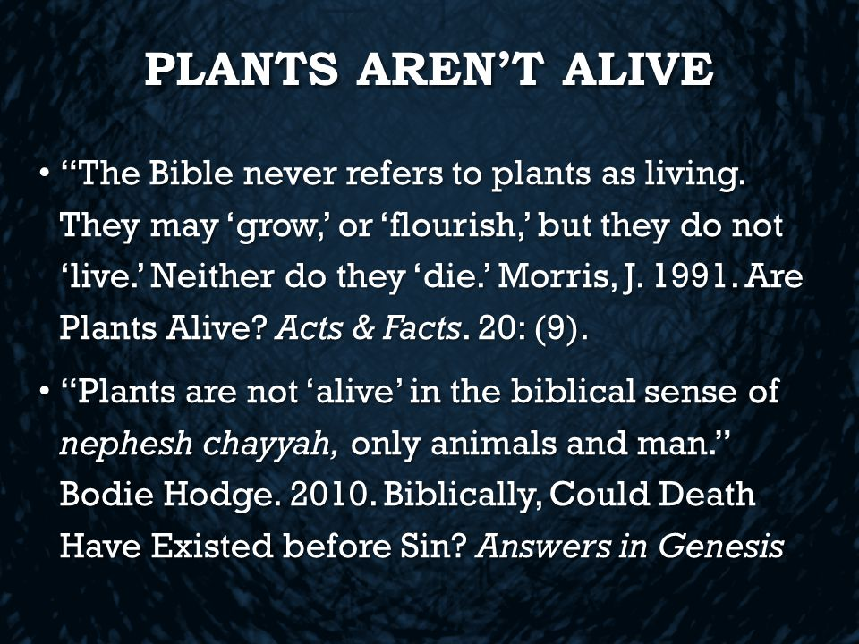 PLANTS AREN'T ALIVE The Bible never refers to plants as living.