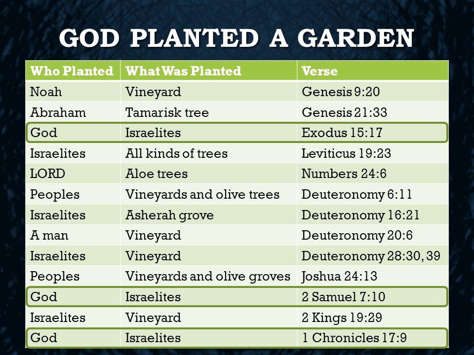 נטע GOD PLANTED A GARDEN Who PlantedWhat Was PlantedVerse NoahVineyardGenesis 9:20 AbrahamTamarisk treeGenesis 21:33 GodIsraelitesExodus 15:17 IsraelitesAll kinds of treesLeviticus 19:23 LORDAloe treesNumbers 24:6 PeoplesVineyards and olive treesDeuteronomy 6:11 IsraelitesAsherah groveDeuteronomy 16:21 A manVineyardDeuteronomy 20:6 IsraelitesVineyardDeuteronomy 28:30, 39 PeoplesVineyards and olive grovesJoshua 24:13 GodIsraelites2 Samuel 7:10 IsraelitesVineyard2 Kings 19:29 GodIsraelites1 Chronicles 17:9