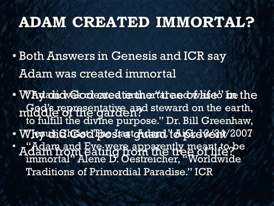 ADAM CREATED IMMORTAL.