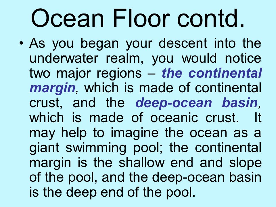 Revealing the Ocean Floor If you could travel to the bottom of the ocean in Deep Flight, you would see the word's largest mountain chain and canyons d