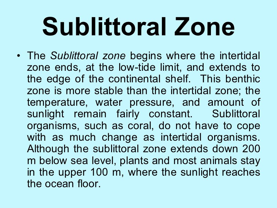 Intertidal Zone contd. Intertidal organisms must be able to live both underwater and on exposed land. Some organisms attach themselves to rocks and re