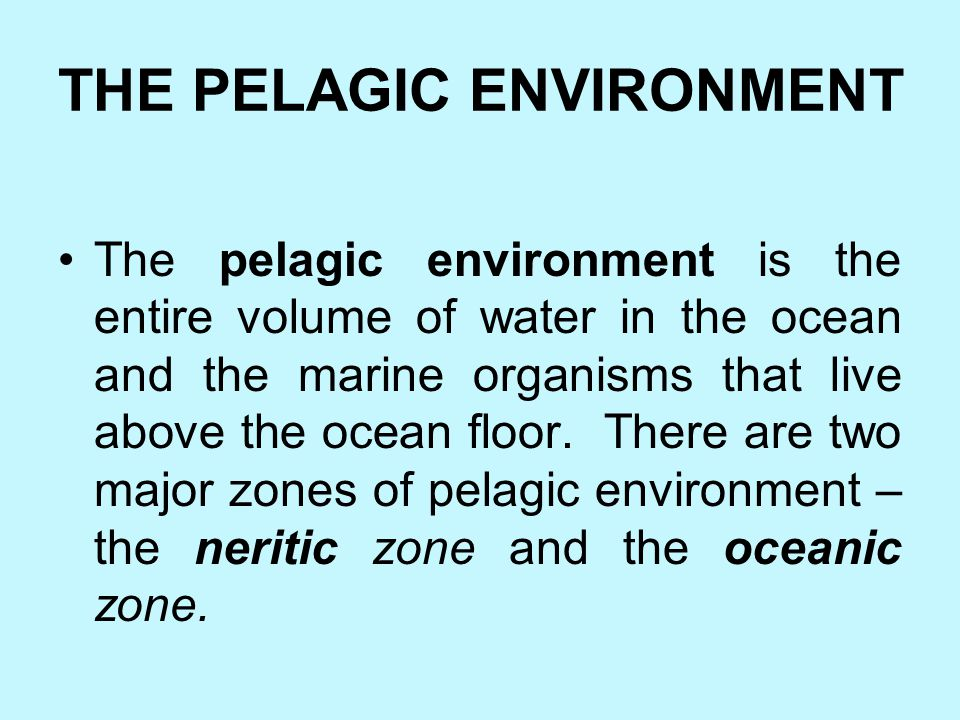 Hadal Zone The deepest benthic zone is the hadal zone. This zone consists of the floor of the ocean trenches and many organisms found there. So far, s