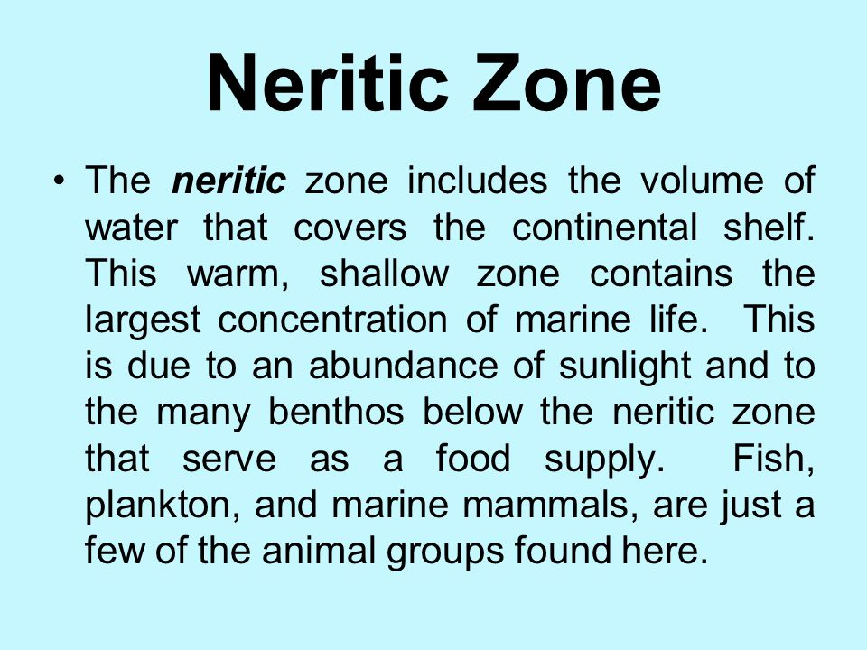 THE PELAGIC ENVIRONMENT The pelagic environment is the entire volume of water in the ocean and the marine organisms that live above the ocean floor. T