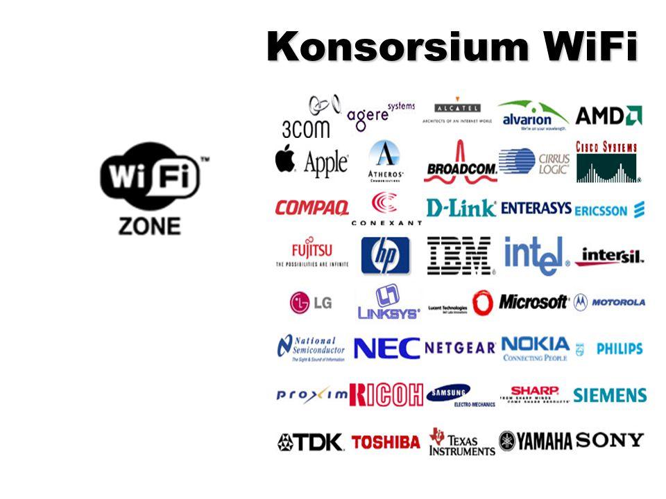 Wired Equivalency Protocol (WEP) Basic encryption technology.