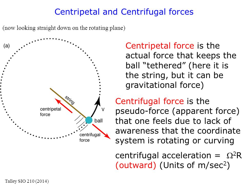 "Centripetal and Centrifugal forces (now looking straight down on the rotating plane) Centripetal force is the actual force that keeps the ball ""tether"