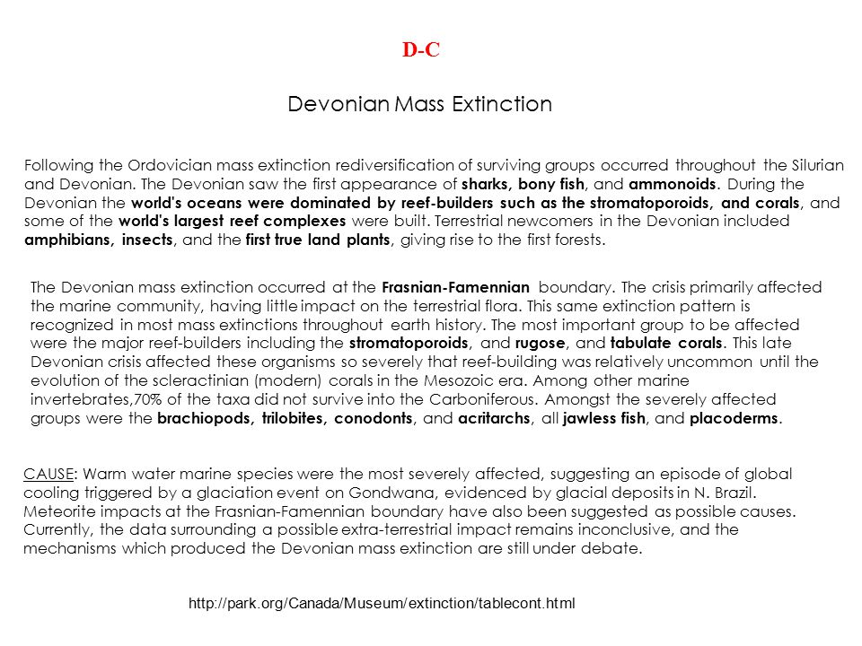 Devonian Mass Extinction http://park.org/Canada/Museum/extinction/tablecont.html Following the Ordovician mass extinction rediversification of survivi