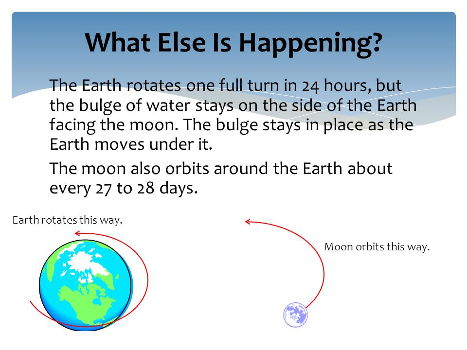 The Earth rotates one full turn in 24 hours, but the bulge of water stays on the side of the Earth facing the moon.