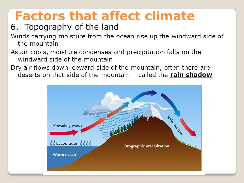 Factors that affect climate 6. Topography of the land Winds carrying moisture from the ocean rise up the windward side of the mountain As air cools, m