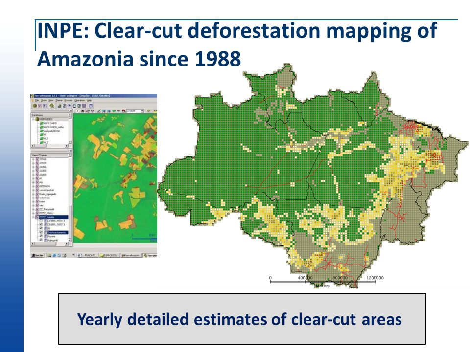 Where was deforestation happenning? ? No location, no public policy
