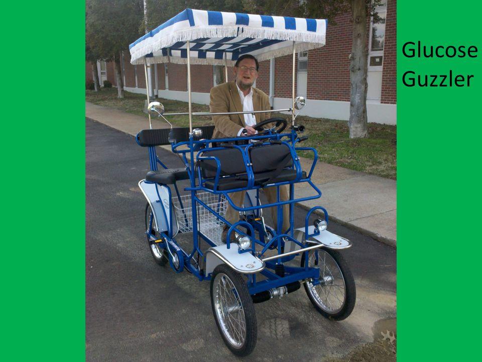 Enter question text... Glucose Guzzler