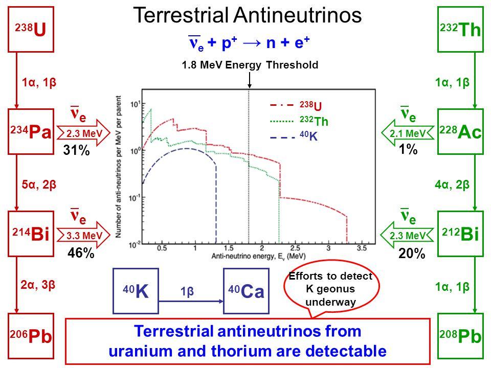 Terrestrial Antineutrinos 238 U 232 Th 40 K ν e + p + → n + e + 1.8 MeV Energy Threshold 212 Bi 228 Ac 232 Th 1α, 1β 4α, 2β 208 Pb 1α, 1β νeνe νeνe 2.