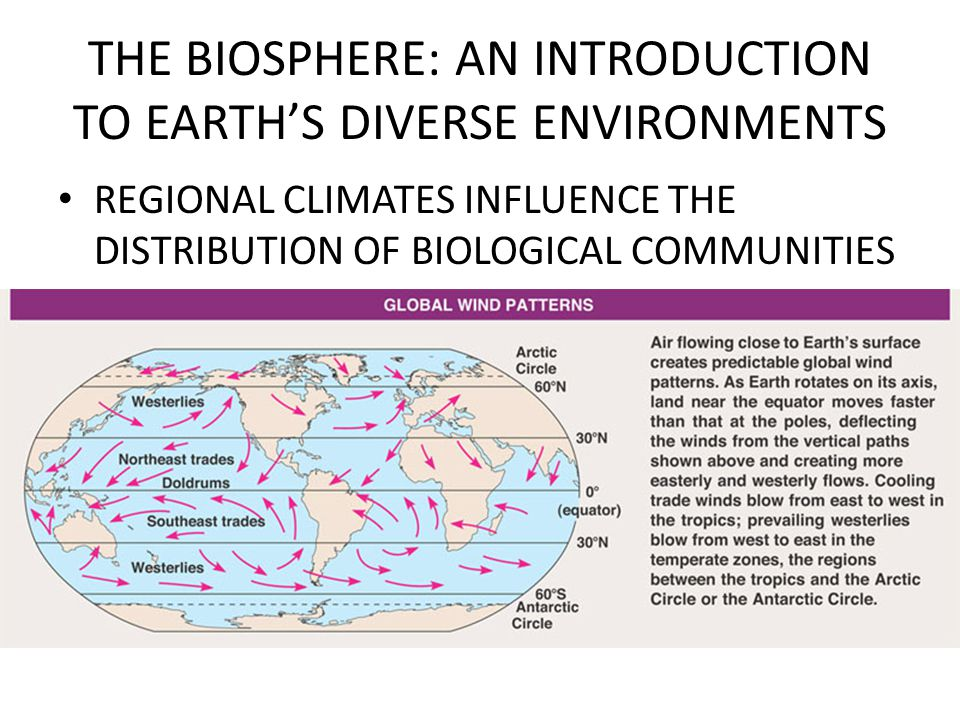 THE BIOSPHERE: AN INTRODUCTION TO EARTH'S DIVERSE ENVIRONMENTS REGIONAL CLIMATES INFLUENCE THE DISTRIBUTION OF BIOLOGICAL COMMUNITIES