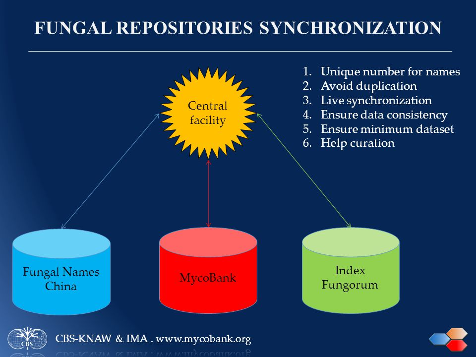 FUNGAL REPOSITORIES SYNCHRONIZATION Index Fungorum MycoBank Fungal Names China Central facility 1.Unique number for names 2.Avoid duplication 3.Live synchronization 4.Ensure data consistency 5.Ensure minimum dataset 6.Help curation