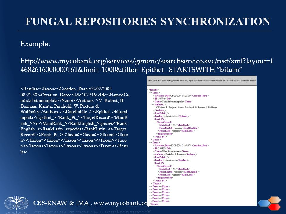 Example: http://www.mycobank.org/services/generic/searchservice.svc/rest/xml layout=1 4682616000000161&limit=1000&filter=Epithet_ STARTSWITH bitum FUNGAL REPOSITORIES SYNCHRONIZATION 03/02/2004 08:21:50 107746 Ca ndida bituminiphila V.