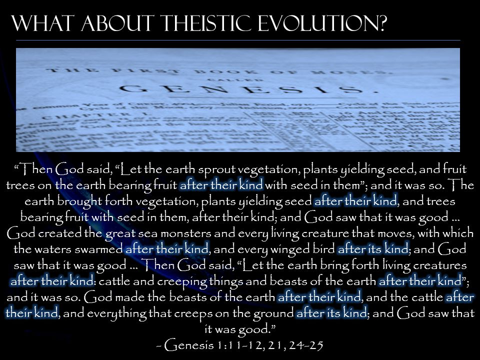 What About Theistic Evolution?