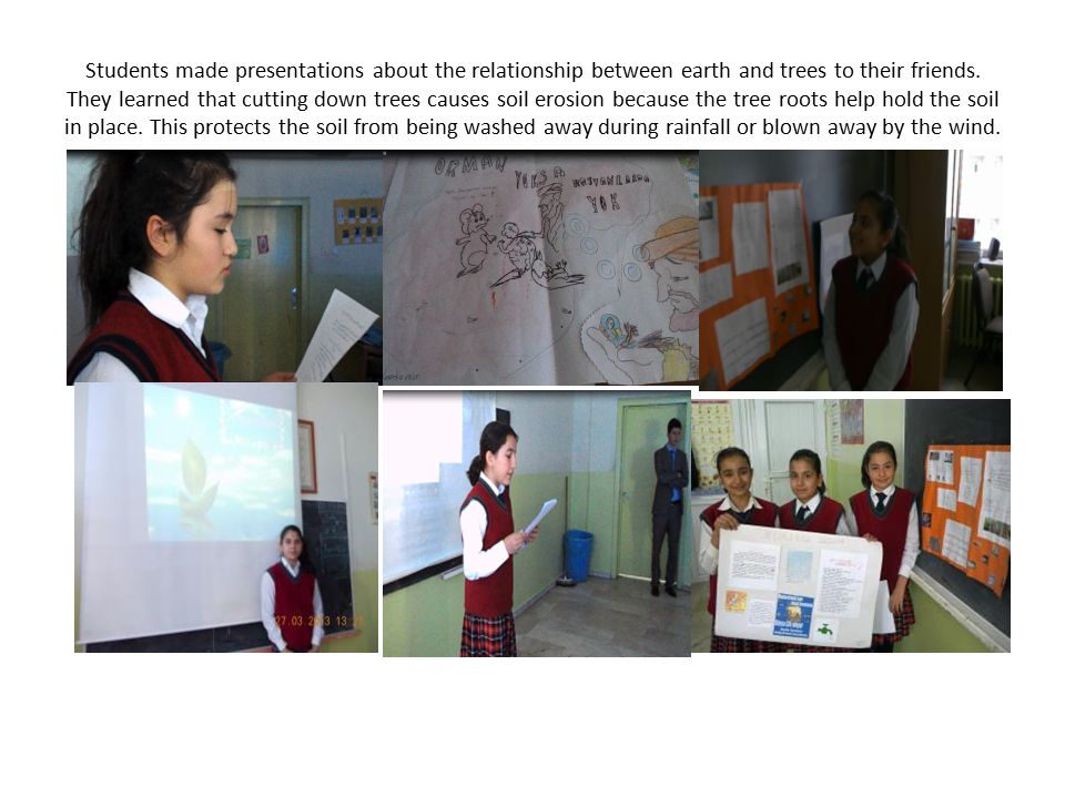 Students made presentations about the relationship between earth and trees to their friends.